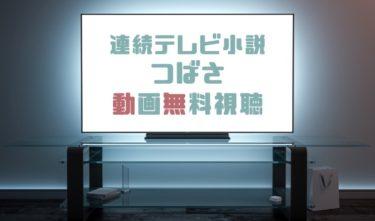 ドラマ|つばさの動画を1話から全話無料で見れる動画配信まとめ