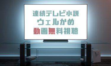 ドラマ|ウェルかめの動画を1話から全話無料で見れる動画配信まとめ