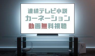 ドラマ|カーネーションの動画を1話から全話無料で見れる動画配信まとめ