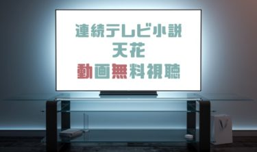 ドラマ|天花の動画を1話から全話無料で見れる動画配信まとめ