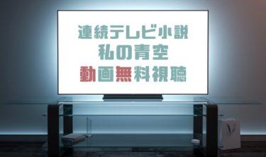 ドラマ 私の青空の動画を1話から全話無料で見れる動画配信まとめ