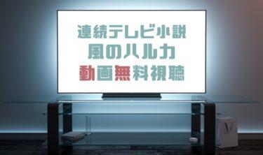 ドラマ|風のハルカの動画を1話から全話無料で見れる動画配信まとめ