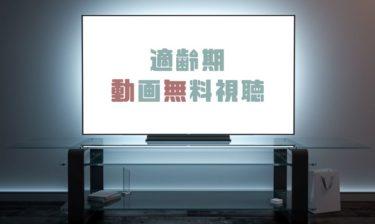 ドラマ 適齢期の動画を1話から全話無料で見れる動画配信まとめ