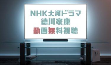 ドラマ|徳川家康の動画を1話から全話無料で見れる動画配信まとめ