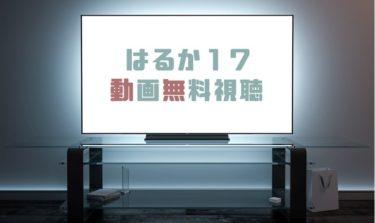 ドラマ はるか17の動画を1話から全話無料で見れる動画配信まとめ