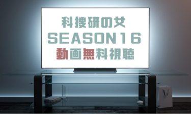 ドラマ|科捜研の女 シーズン16の動画を1話から無料で見れる動画配信まとめ