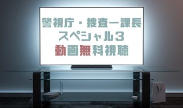 ドラマ|警視庁・捜査一課長スペシャル3の動画を無料で見れる動画配信まとめ