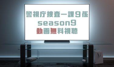 ドラマ|警視庁捜査一課9係season9の動画を全話無料で見れる動画配信まとめ