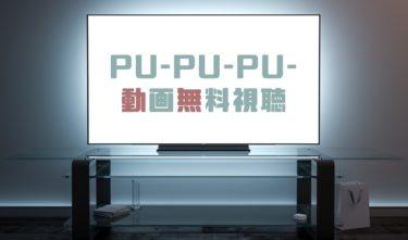 ドラマ|プープープーの動画を1話から全話無料で見れる動画配信まとめ